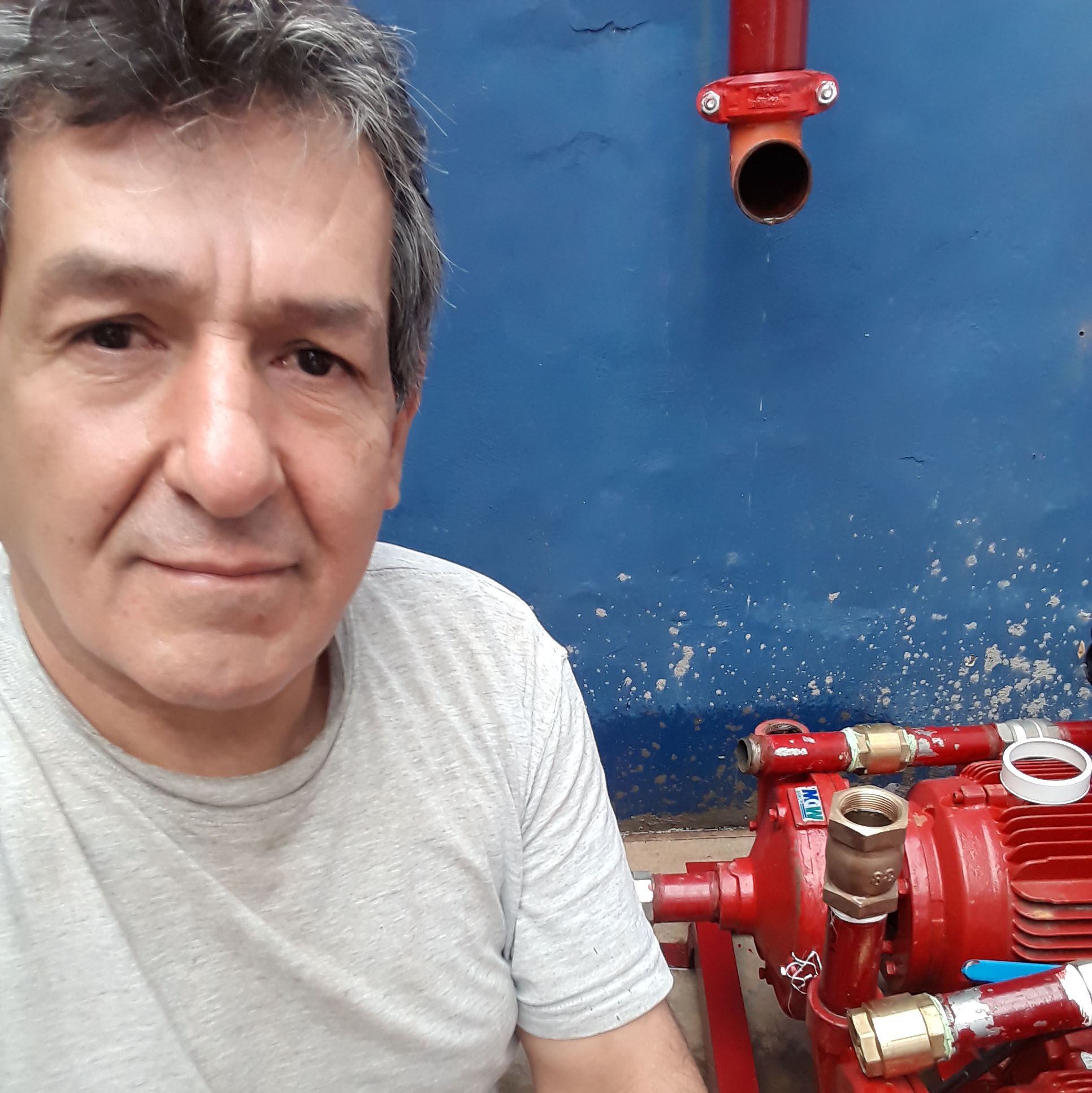 Domingo Felix Gregorio